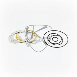 Dichtungssatz 2FAST 70CC - 100CC Minarelli