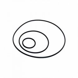 O-Ring Dichtsatz 2FAST FL100